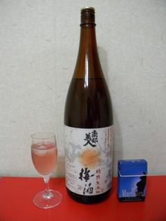 110430徳島101.jpg