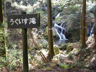 20110304神山 026.jpg