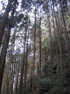 神山出張 013.jpg